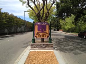 Monument Sign - Walnut Creek