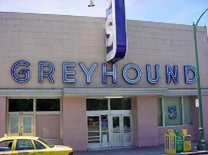Open Face Neon - Greyhound Bus
